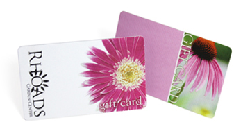plastic cards with paper finish