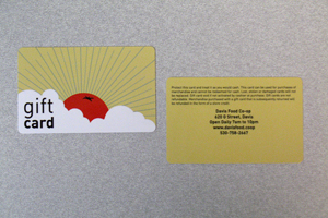 UV Plastic Gift Cards With Laminate Coating